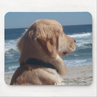 Viceroy At The Beach Mousepad
