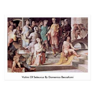 Victim Of Seleucus By Domenico Beccafumi Post Card