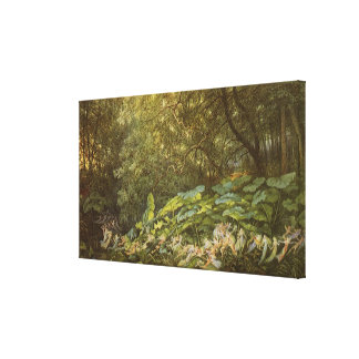 Victorian Fairies, Under the Dock Leaves by Doyle Canvas Print