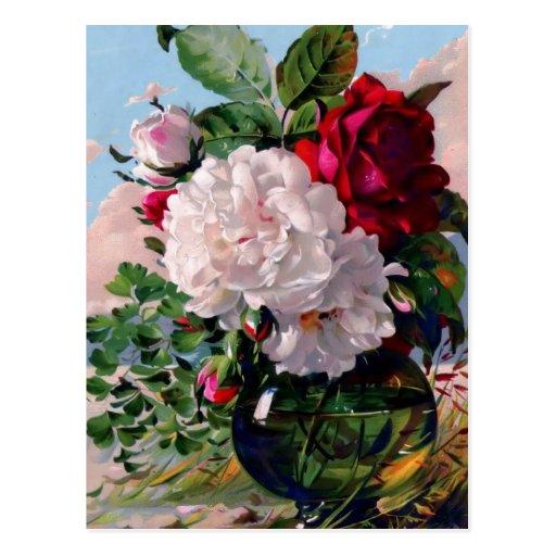 Victorian Floral Vase Study Postcards