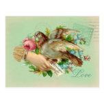 Victorian Valentine Bird and rose Postcard