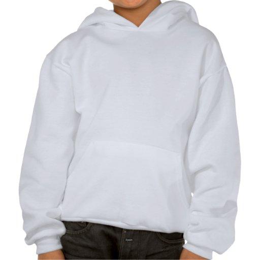 Video Geek Fire Hooded Pullover