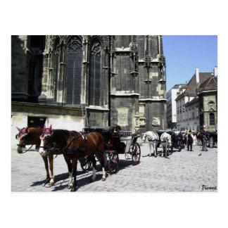 Vienna, Austria, Steffensdom Travel Postcard