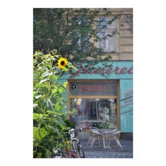 Vienna Sunflower Scene Photo Print