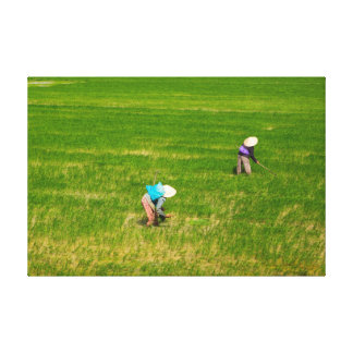 Vietnamese Farmers Canvas Print