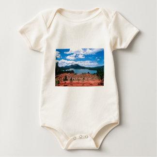 Vietnamese Forest Lake Baby Bodysuit