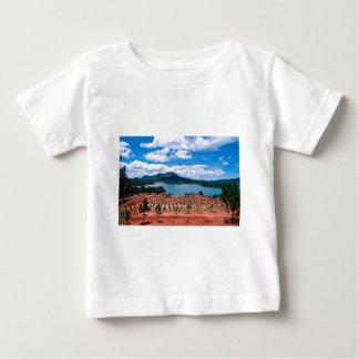 Vietnamese Forest Lake Baby T-Shirt
