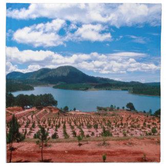 Vietnamese Forest Lake Napkin