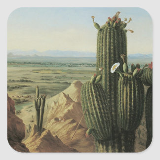 View from Maricopa Mountain Near Rio Gila by Pratt Square Sticker