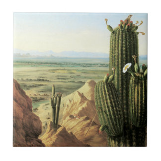 View from Maricopa Mountain near the River Gila Small Square Tile