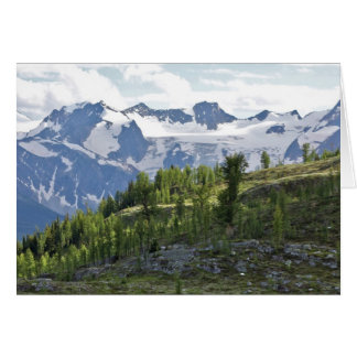 View from Monica Meadows, British Columbia, Canada Greeting Card