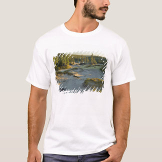 View of a lake and the surrounding sand hills, T-Shirt