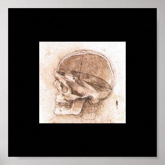 View of a Skull by Leonardo Da Vinci circa 1489 Poster