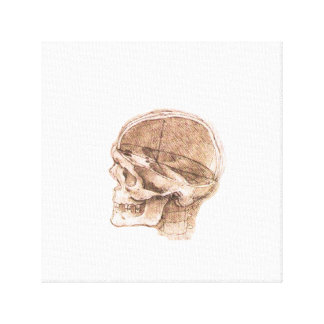 View of a Skull Leonardo da Vinci Canvas Prints
