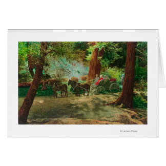 View of a Stage Coach Amongst Big Trees Greeting Card