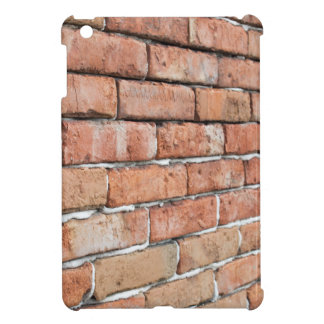 View of an old brick wall with a blur at an angle iPad mini cover