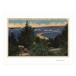 View of Aquatic Park Promenade & Pier Postcard