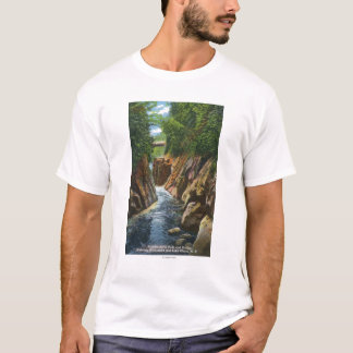 View of Ausable River Falls and Bridge T-Shirt