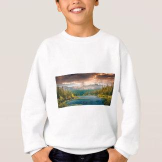 view of beauty and wonder sweatshirt