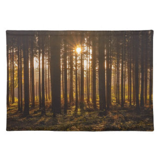 View of Black Trees and Sun Placemat