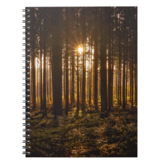 View of Black Trees and Sun Spiral Notebook