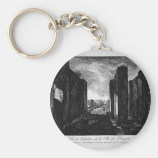 View of buildings taken from the entrance basic round button key ring