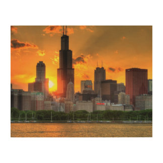 View of Chicago's skyline from  Adler Wood Print