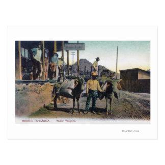 View of Donkeys Carrying WaterBisbee, AZ Postcard