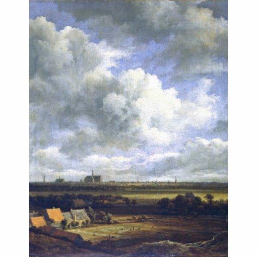 View Of Haarlem By Ruisdael Jacob Isaacksz. Van (B Cut Outs