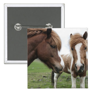 View of Horse, close-up 15 Cm Square Badge