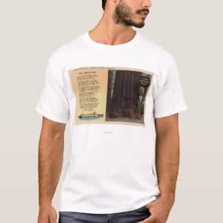 View of Lanes Redwood Flat T-Shirt
