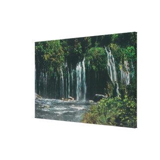View of Mossbrae FallsShasta Springs, CA Canvas Print