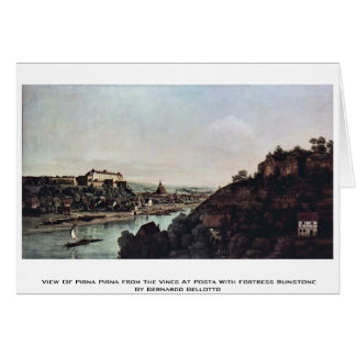 View Of Pirna Pirna From The Vines At Posta Card