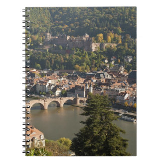 View of the Alte Brucke or Old Bridge Note Book