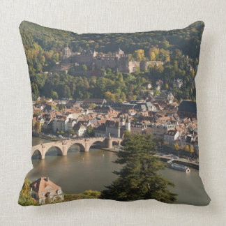 View of the Alte Brucke or Old Bridge Throw Cushion