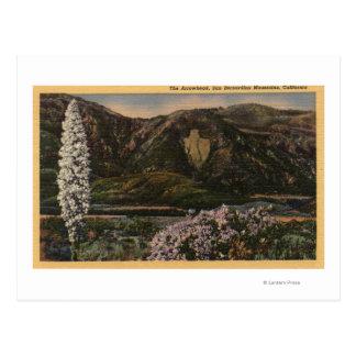View of the Arrowhead - San Bernardino Mts., CA Postcard