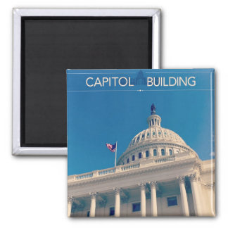 View of the Capitol Magnet