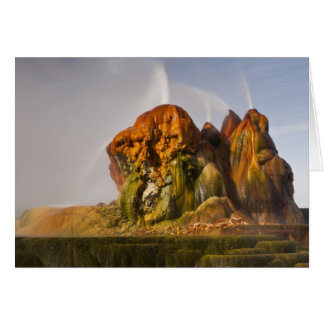 View of the Fly Geyser 2 Card