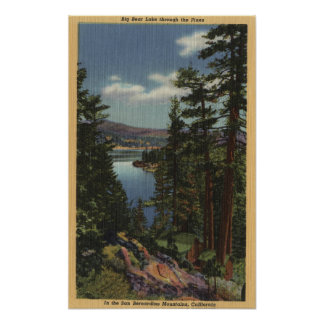 View of the Lake through the Pines # 2 Poster