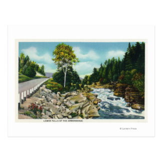 View of the Lower Falls of the Ammonoosuc River Postcard