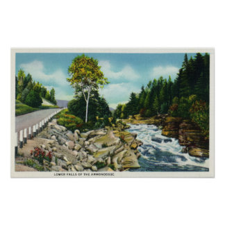 View of the Lower Falls of the Ammonoosuc River Poster
