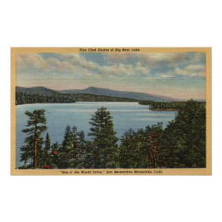 View of the Pine Clad Shores of Lake Print