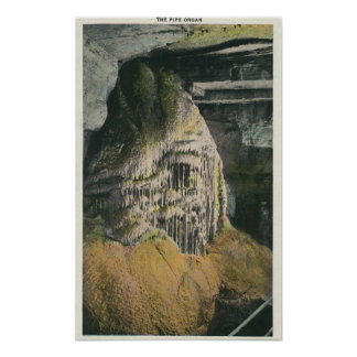 View of the Pipe Organ Poster