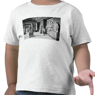View of the Seasons' room T Shirt