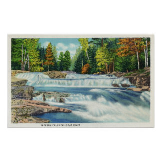 View of the Wild Cat River and Jackson Falls Poster