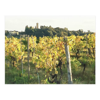 View of Tuscany Town and Chianti Vineyard Postcard