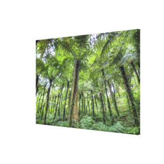 View of vegetation in Bali Botanical Gardens, Gallery Wrapped Canvas