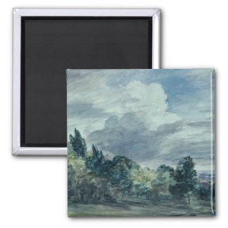 View over a wide landscape, with trees in the fore square magnet