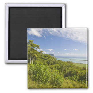 Viewpoint near Grand Riviere Noire, South Square Magnet