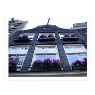 Views of Amsterdam. Postcard